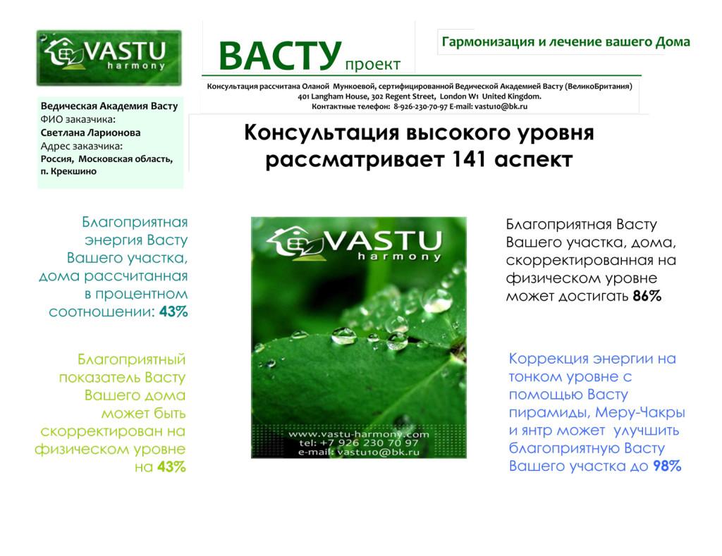 Васту-проект-Светлана-Ларионова-1-1